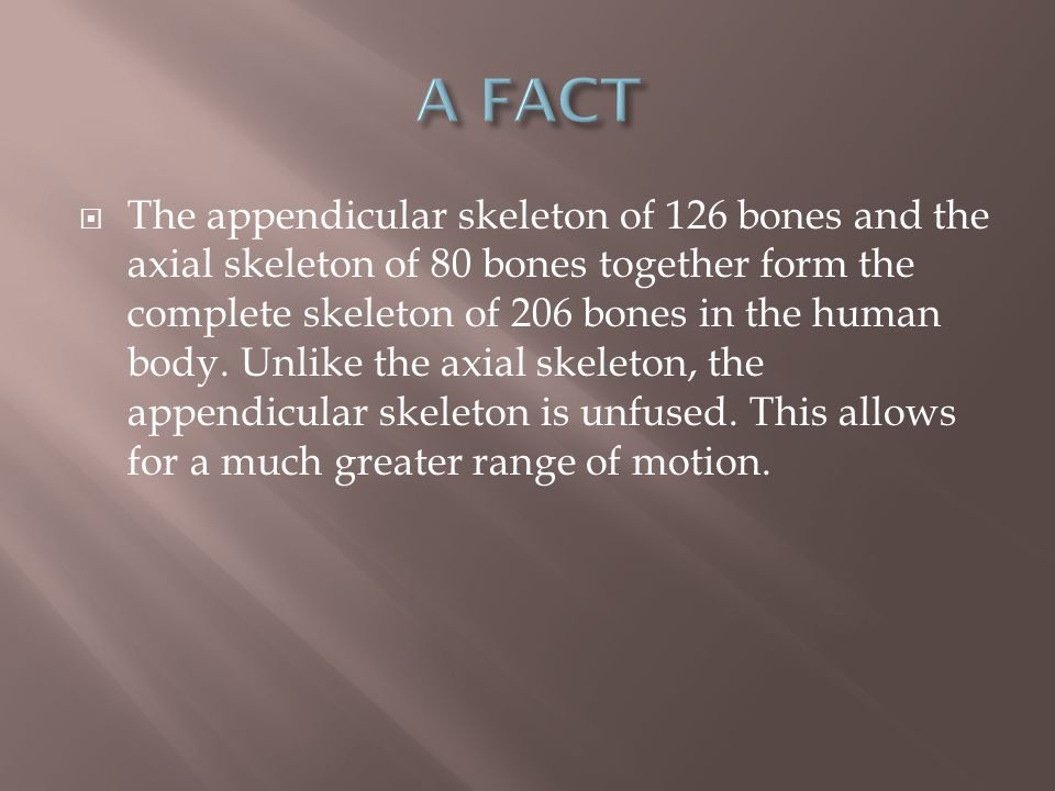  4) Pelvis (2 bones) - Left and right os coxae (2) (ilium).