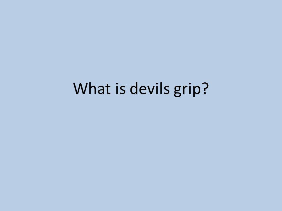 What is devils grip?