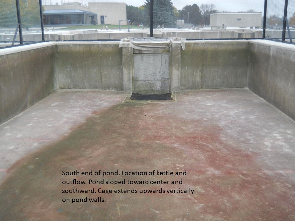South end of pond. Location of kettle and outflow.