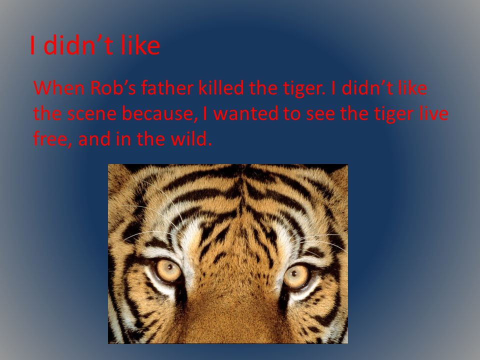 I didn't like When Rob's father killed the tiger.