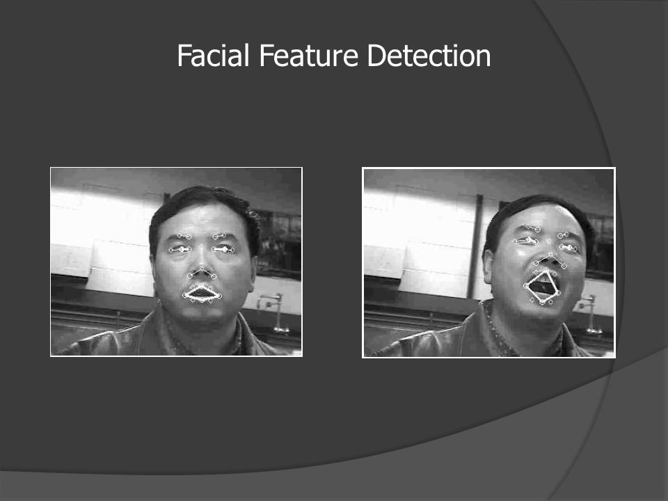 Facial Feature Detection