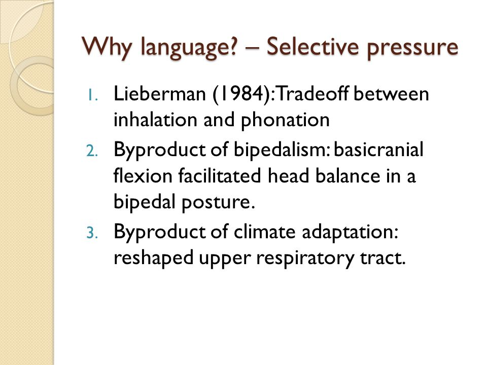 Why language. – Selective pressure 1.