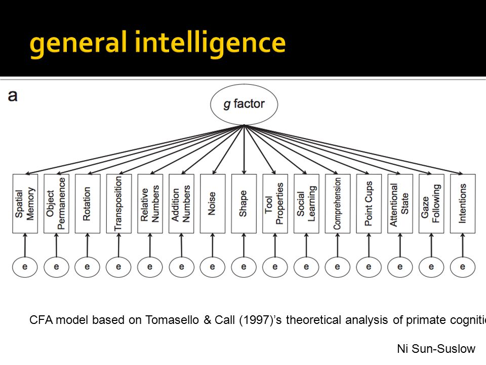 CFA model based on Tomasello & Call (1997)'s theoretical analysis of primate cognition. Ni Sun-Suslow