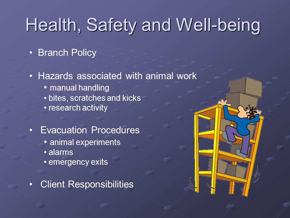Health, Safety and Well-being Branch Policy Hazards associated with animal work manual handling bites, scratches and kicks research activity Evacuation Procedures animal experiments alarms emergency exits Client Responsibilities