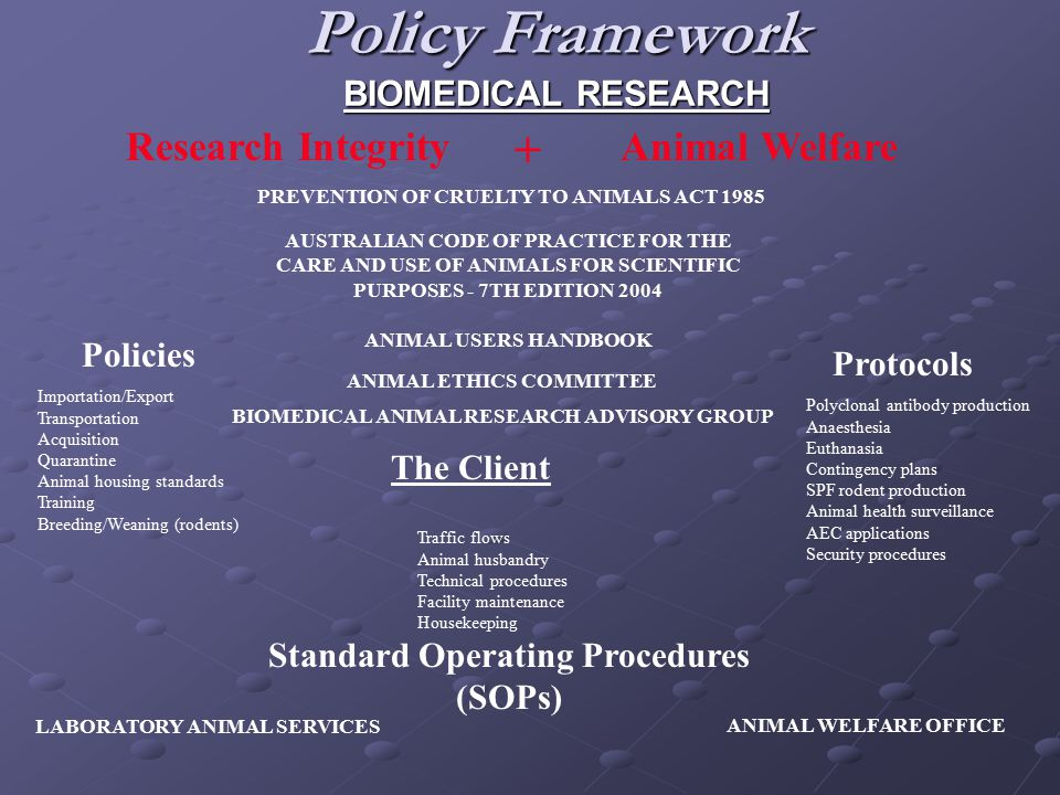 Policy Framework BIOMEDICAL RESEARCH The Client PREVENTION OF CRUELTY TO ANIMALS ACT 1985 AUSTRALIAN CODE OF PRACTICE FOR THE CARE AND USE OF ANIMALS