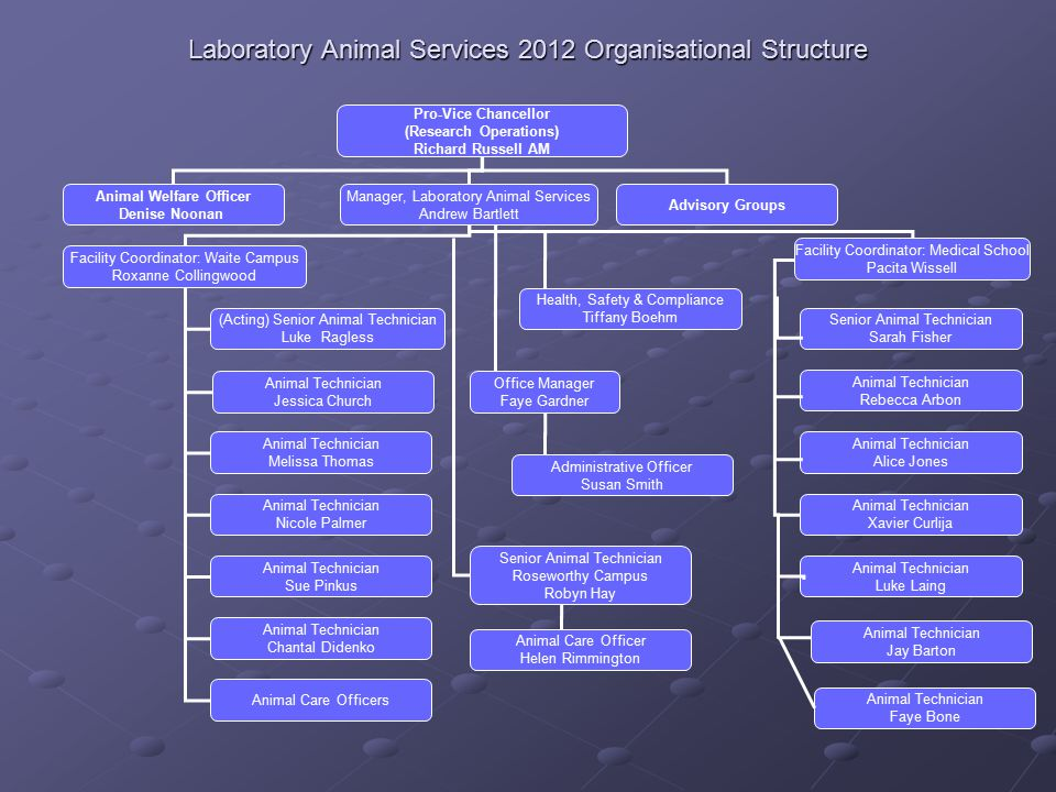 Laboratory Animal Services 2012 Organisational Structure Pro-Vice Chancellor (Research Operations) Richard Russell AM Animal Welfare Officer Denise No
