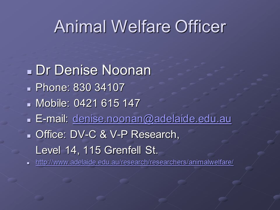 Animal Welfare Officer Dr Denise Noonan Dr Denise Noonan Phone: 830 34107 Phone: 830 34107 Mobile: 0421 615 147 Mobile: 0421 615 147 E-mail: denise.noonan@adelaide.edu.au E-mail: denise.noonan@adelaide.edu.audenise.noonan@adelaide.edu.au Office: DV-C & V-P Research, Office: DV-C & V-P Research, Level 14, 115 Grenfell St.