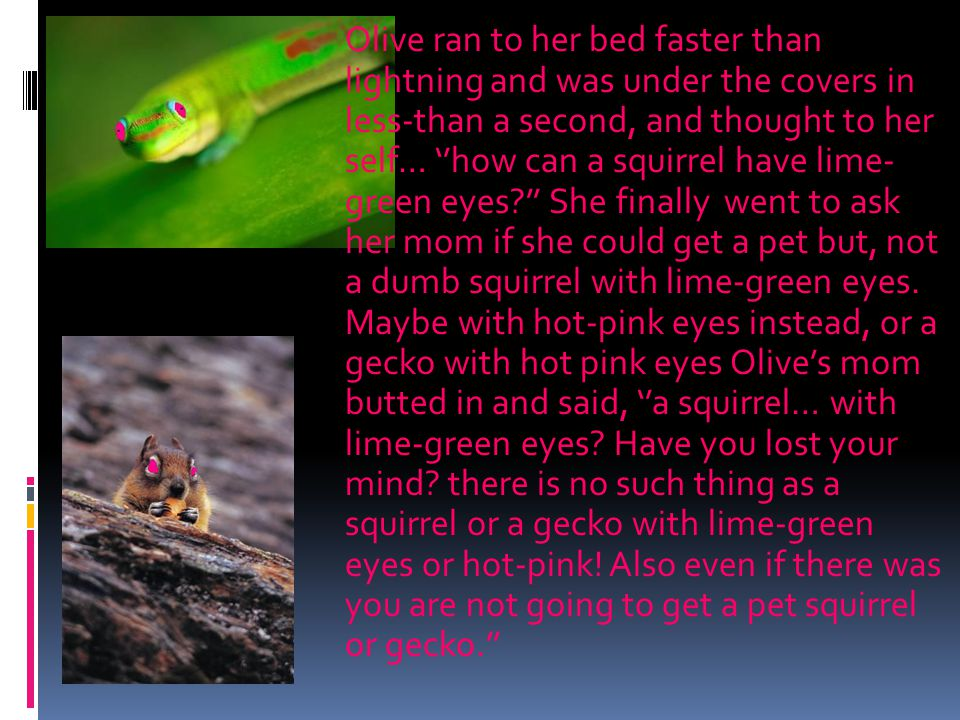 Olive ran to her bed faster than lightning and was under the covers in less-than a second, and thought to her self… ''how can a squirrel have lime- green eyes?'' She finally went to ask her mom if she could get a pet but, not a dumb squirrel with lime-green eyes.