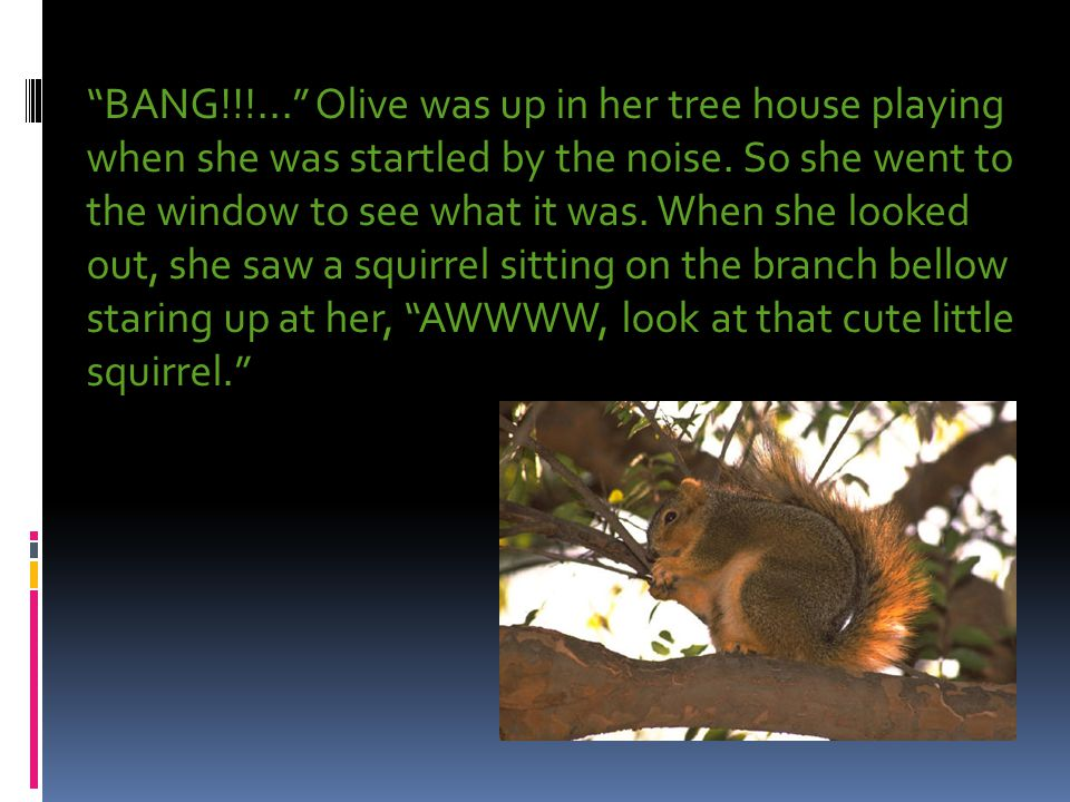 """""""BANG!!!..."""" Olive was up in her tree house playing when she was startled by the noise. So she went to the window to see what it was. When she looked"""