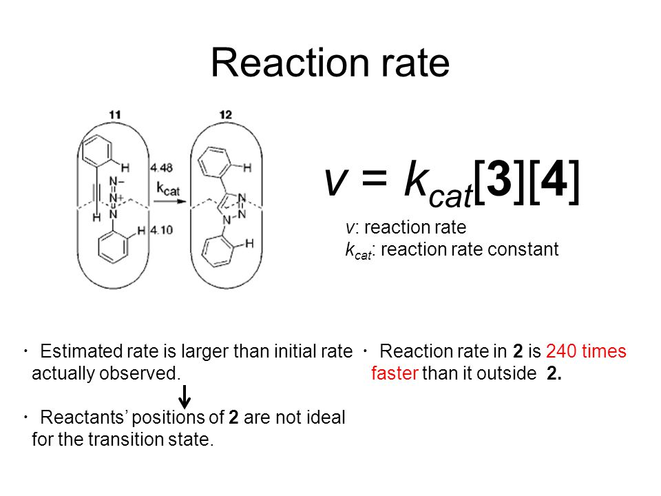 Reaction rate v = k cat [3][4] v: reaction rate k cat : reaction rate constant ・ Estimated rate is larger than initial rate actually observed. ・ React