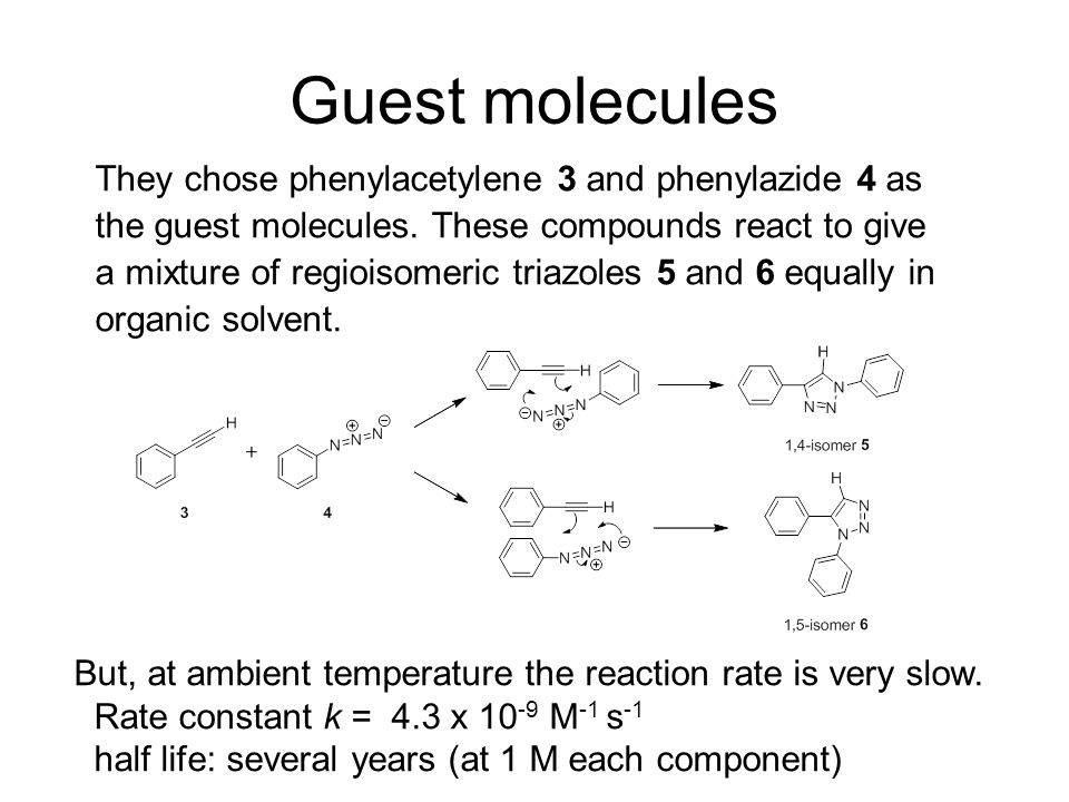 Guest molecules They chose phenylacetylene 3 and phenylazide 4 as the guest molecules.