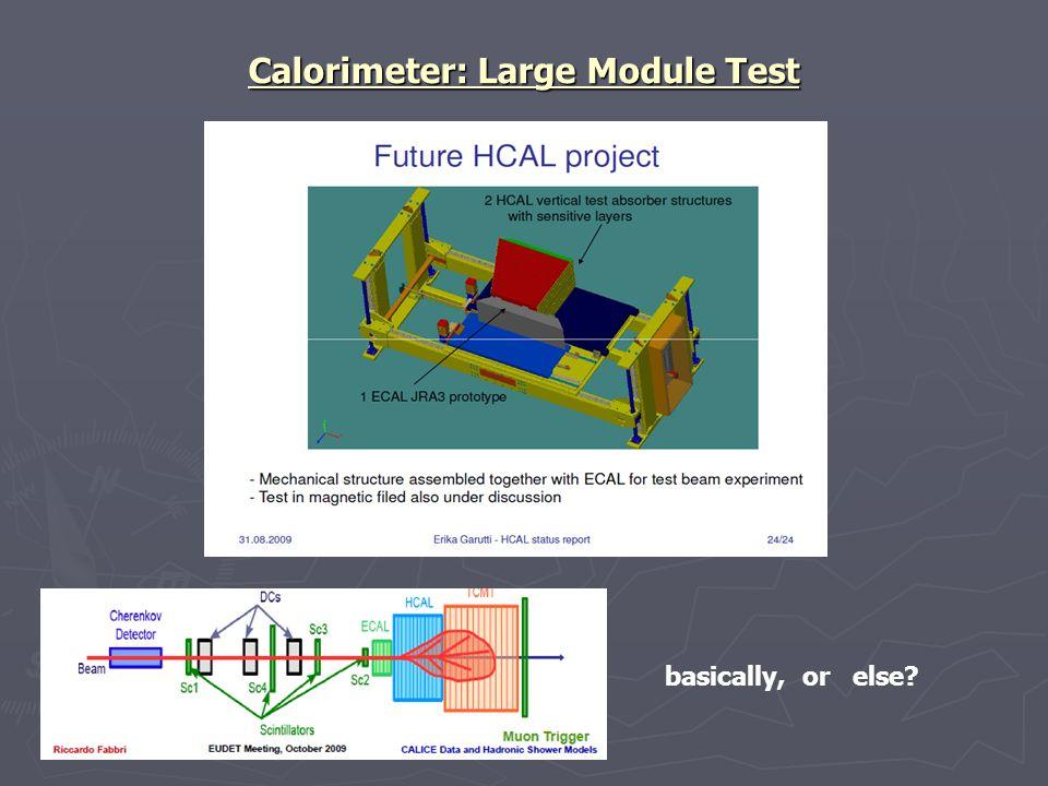 Calorimeter: Large Module Test basically, or else