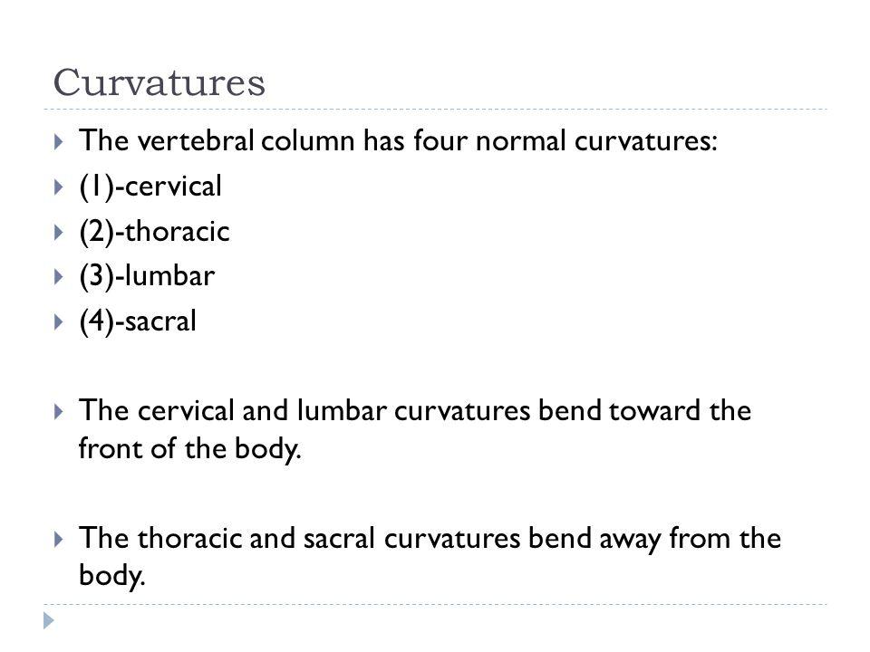 Curvatures  The vertebral column has four normal curvatures:  (1)-cervical  (2)-thoracic  (3)-lumbar  (4)-sacral  The cervical and lumbar curvat
