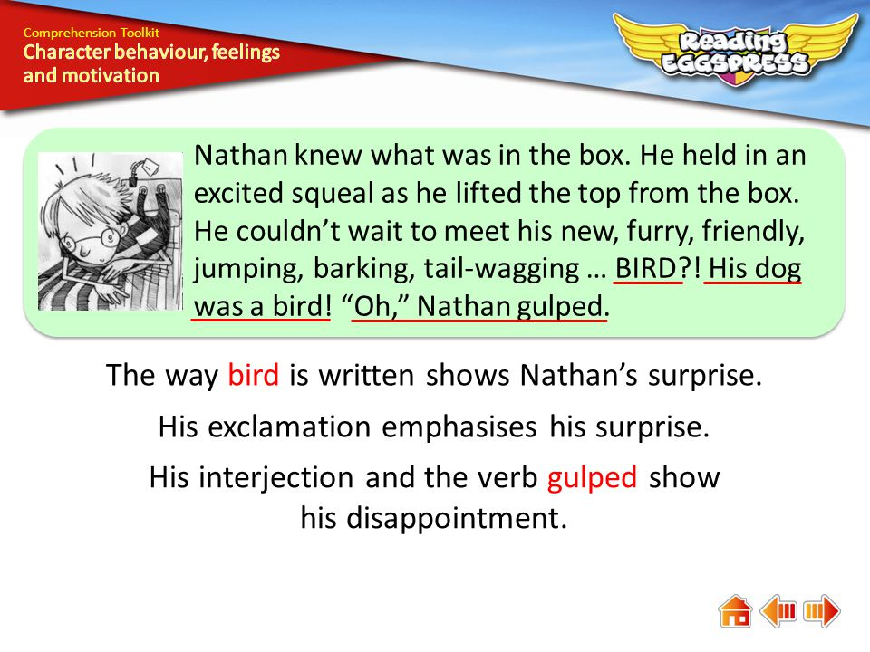 Comprehension Toolkit The way bird is written shows Nathan's surprise.
