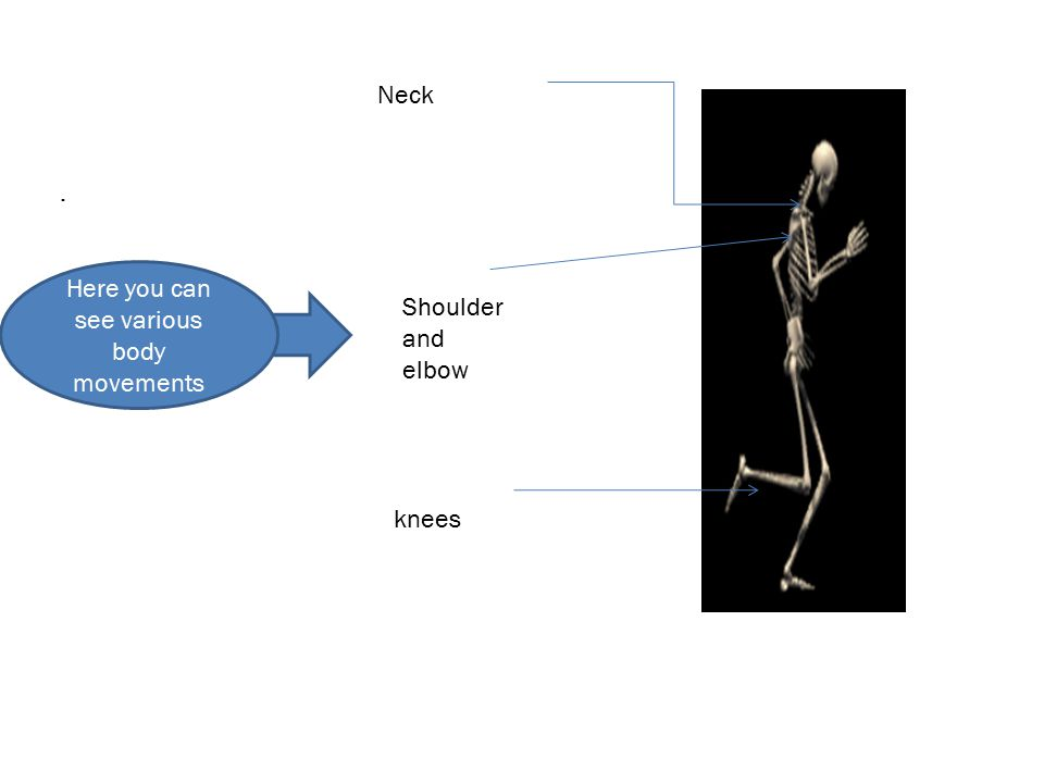 Neck Shoulder and elbow knees. Here you can see various body movements
