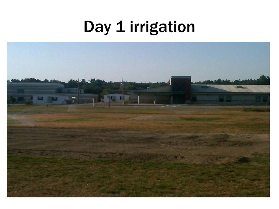 Day 1 irrigation