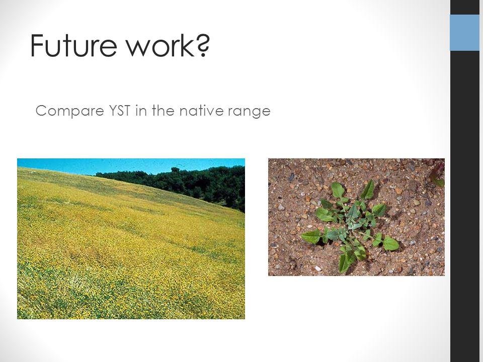 Future work? Compare YST in the native range