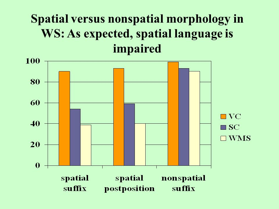 Spatial versus nonspatial morphology in WS: As expected, spatial language is impaired
