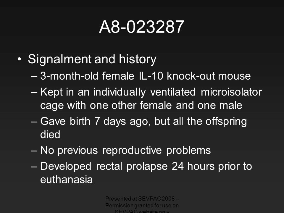 A8-023287 Signalment and history –3-month-old female IL-10 knock-out mouse –Kept in an individually ventilated microisolator cage with one other female and one male –Gave birth 7 days ago, but all the offspring died –No previous reproductive problems –Developed rectal prolapse 24 hours prior to euthanasia Presented at SEVPAC 2008 – Permission granted for use on SEVPAC website only