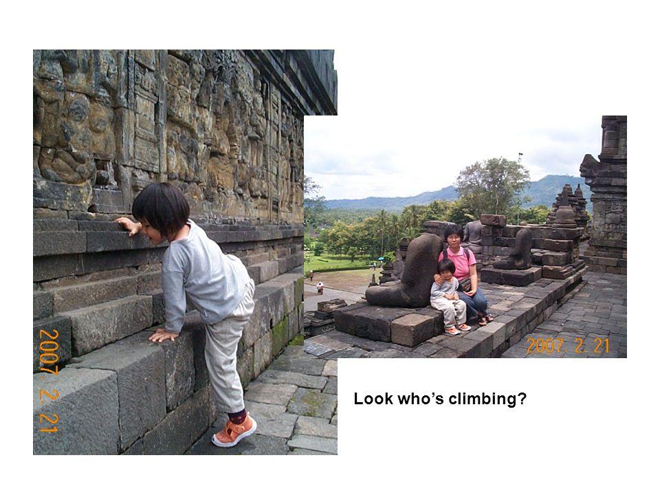 Look who's climbing