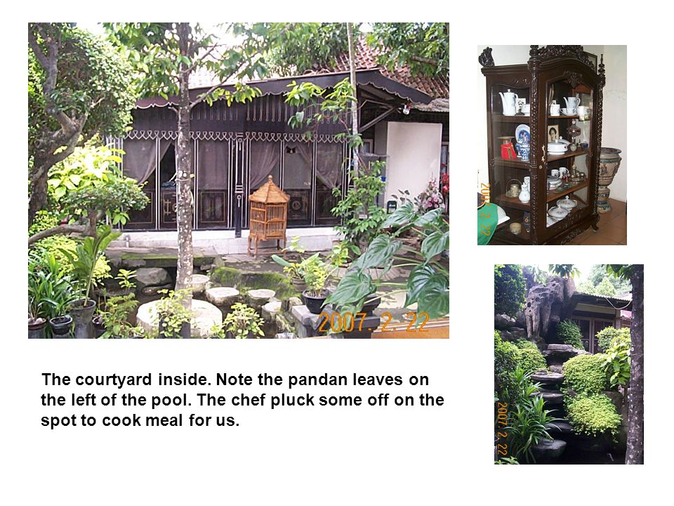The courtyard inside. Note the pandan leaves on the left of the pool.