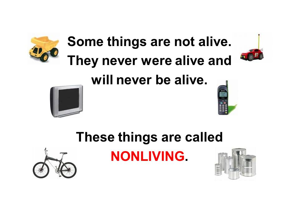 Some things are not alive.They never were alive and will never be alive.
