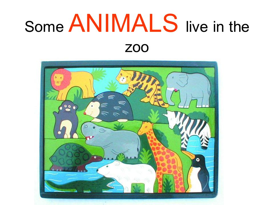 Some ANIMALS live in the zoo