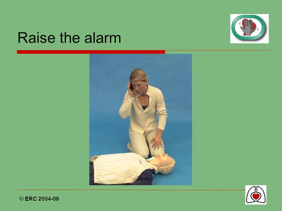© ERC 2004-09 Raise the alarm
