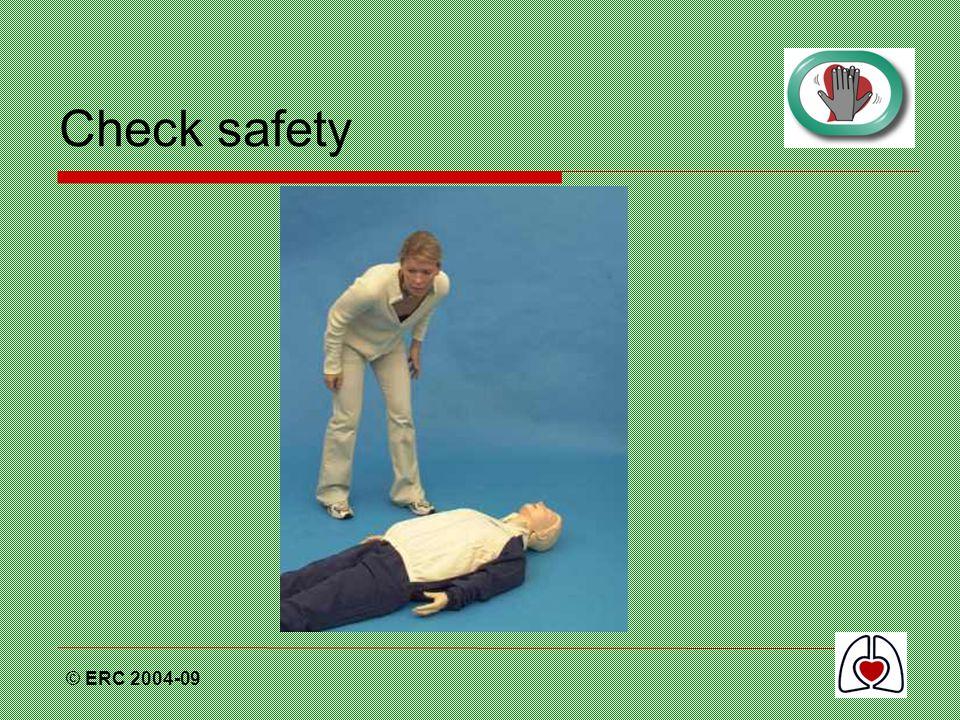 © ERC 2004-09 Check safety