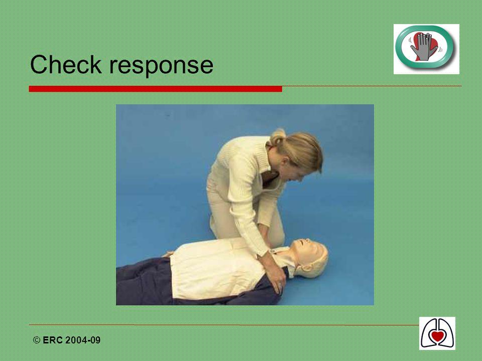 © ERC 2004-09 Check response