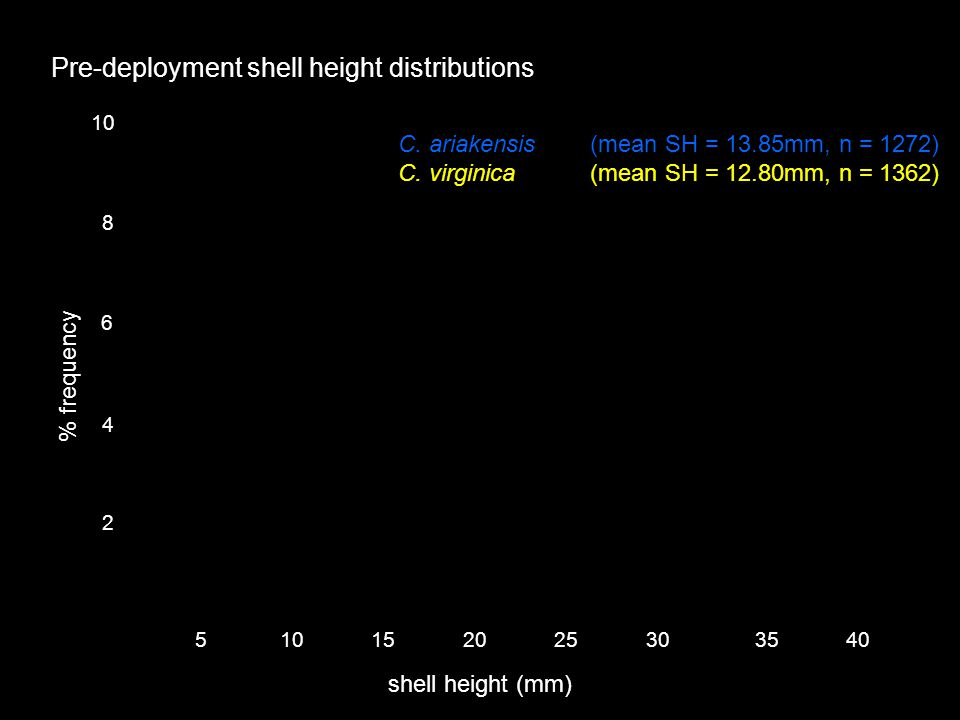 2 4 6 8 10 % frequency shell height (mm) 5101520253035 40 Pre-deployment shell height distributions C.