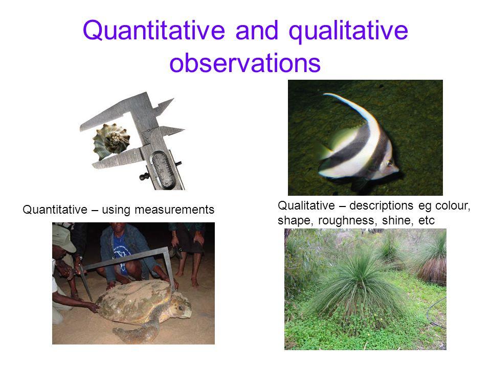 Quantitative and qualitative observations Quantitative – using measurements Qualitative – descriptions eg colour, shape, roughness, shine, etc