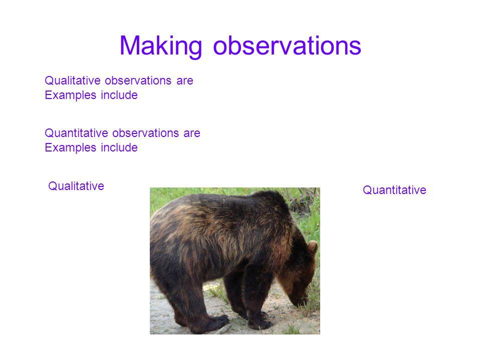 Making observations Quantitative observations are Examples include Qualitative observations are Examples include Qualitative Quantitative