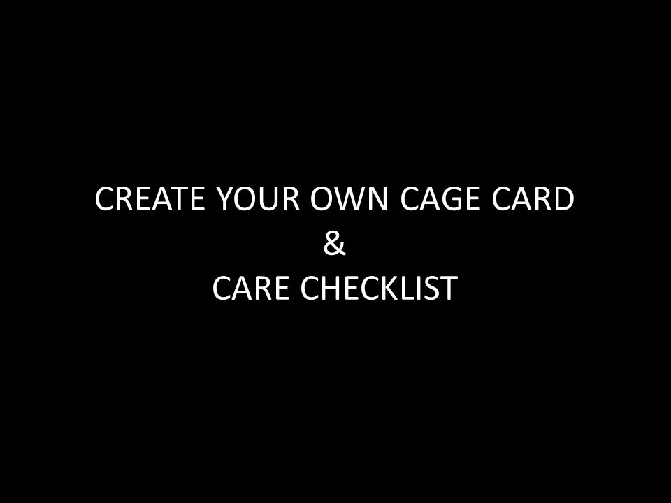 CREATE YOUR OWN CAGE CARD & CARE CHECKLIST