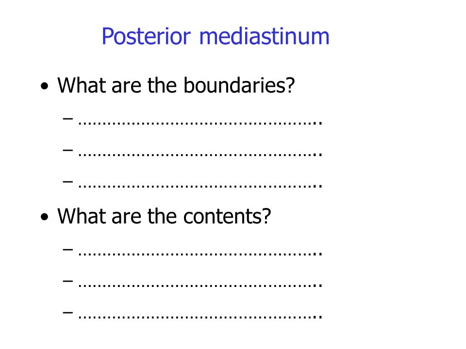 Posterior mediastinum What are the boundaries? –………………………………………….. What are the contents? –…………………………………………..