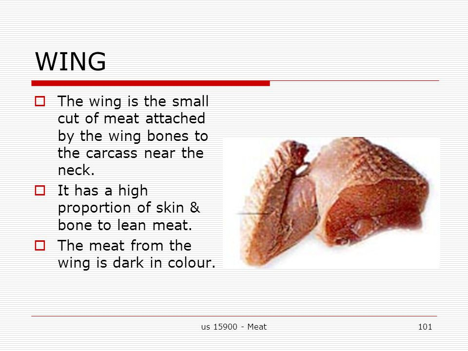 us 15900 - Meat101 WING  The wing is the small cut of meat attached by the wing bones to the carcass near the neck.