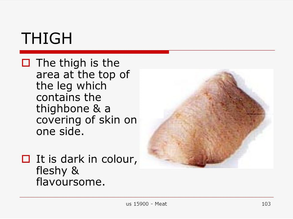 us 15900 - Meat103 THIGH  The thigh is the area at the top of the leg which contains the thighbone & a covering of skin on one side.