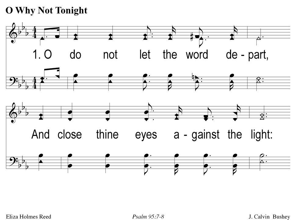 1-1 O Why Not Tonight O Why Not Tonight