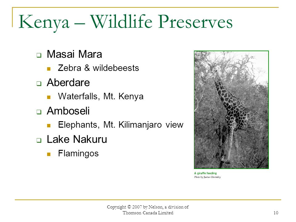 Copyright © 2007 by Nelson, a division of Thomson Canada Limited 10 Kenya – Wildlife Preserves  Masai Mara Zebra & wildebeests  Aberdare Waterfalls,