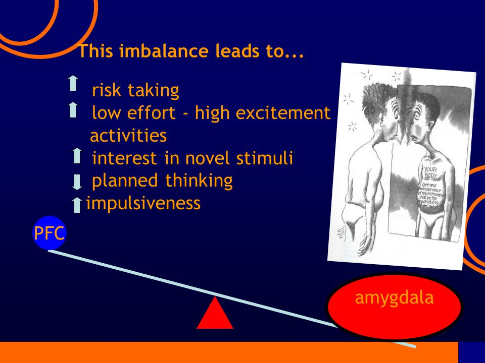 risk taking low effort - high excitement activities interest in novel stimuli planned thinking impulsiveness PFC amygdala This imbalance leads to...