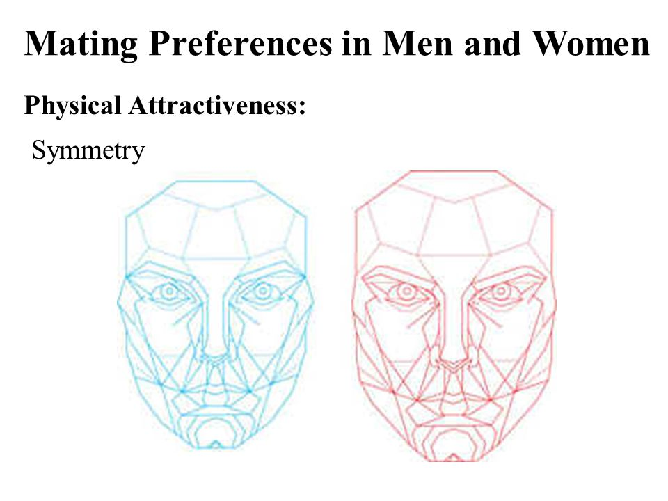 Mating Preferences in Men and Women Physical Attractiveness: Symmetry
