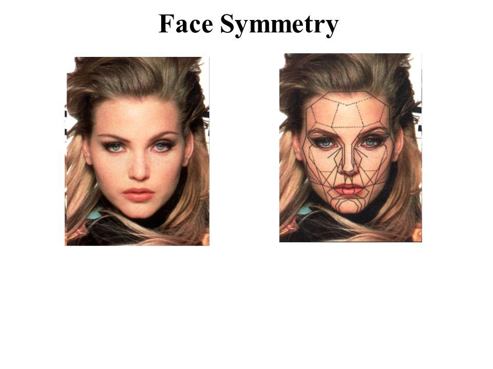 Face Symmetry