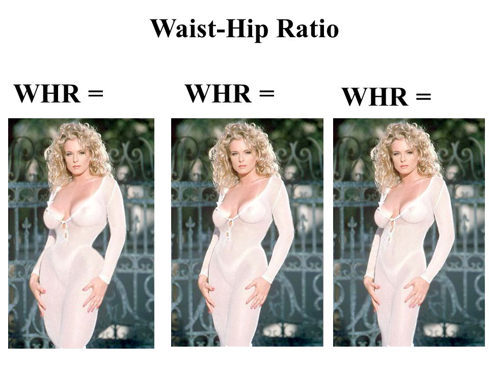 WHR = Waist-Hip Ratio