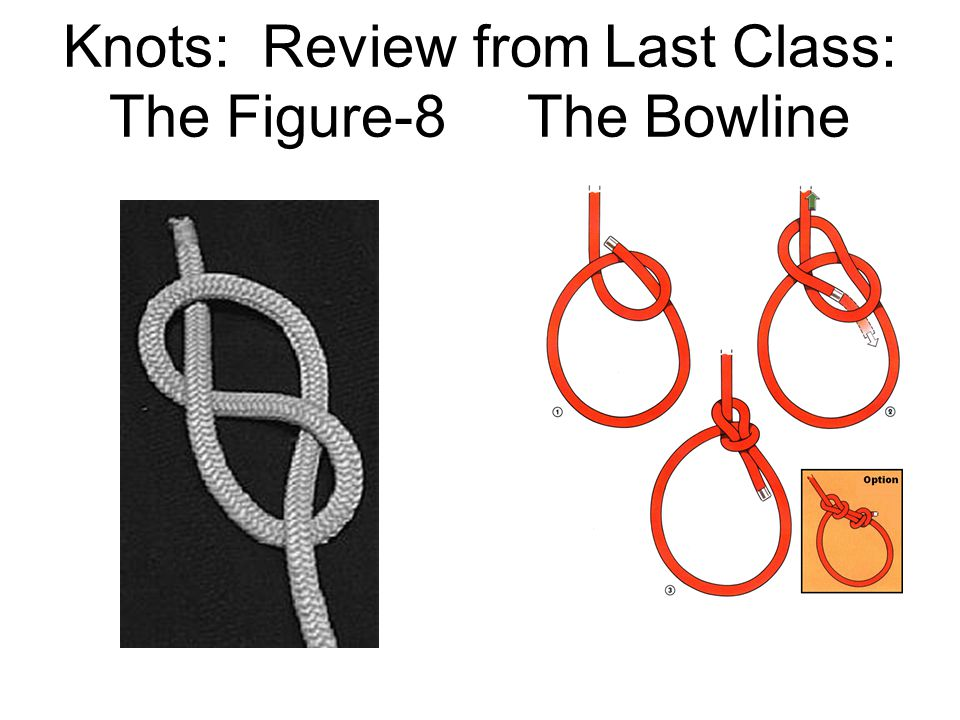 Knots: Review from Last Class: The Figure-8 The Bowline