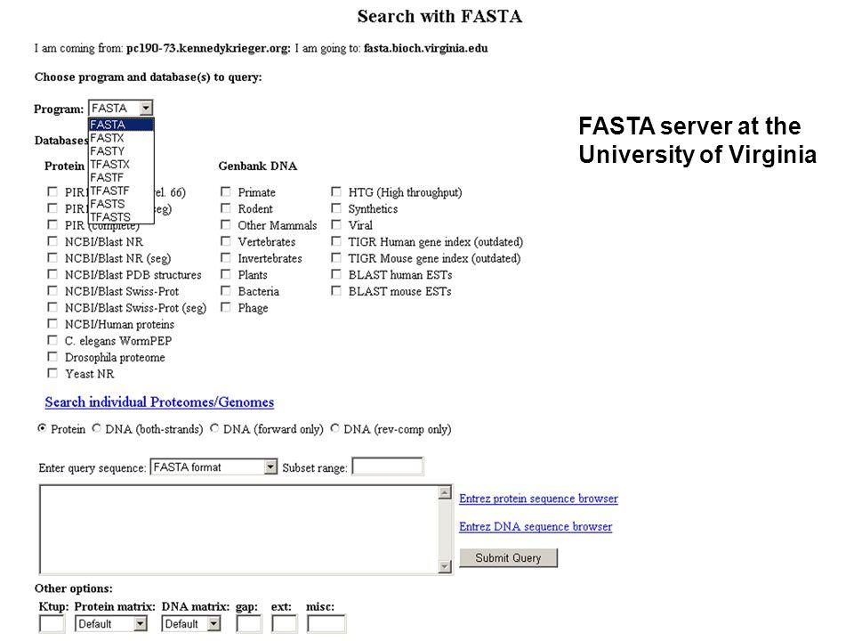 FASTA server at the University of Virginia