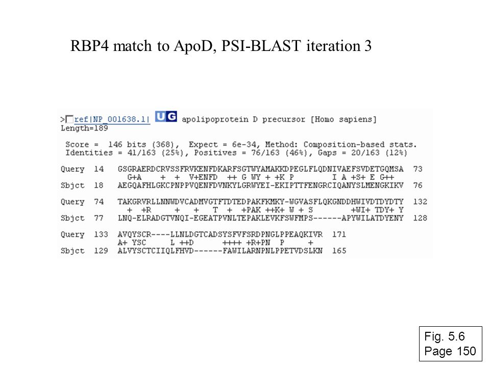 RBP4 match to ApoD, PSI-BLAST iteration 3 Fig. 5.6 Page 150