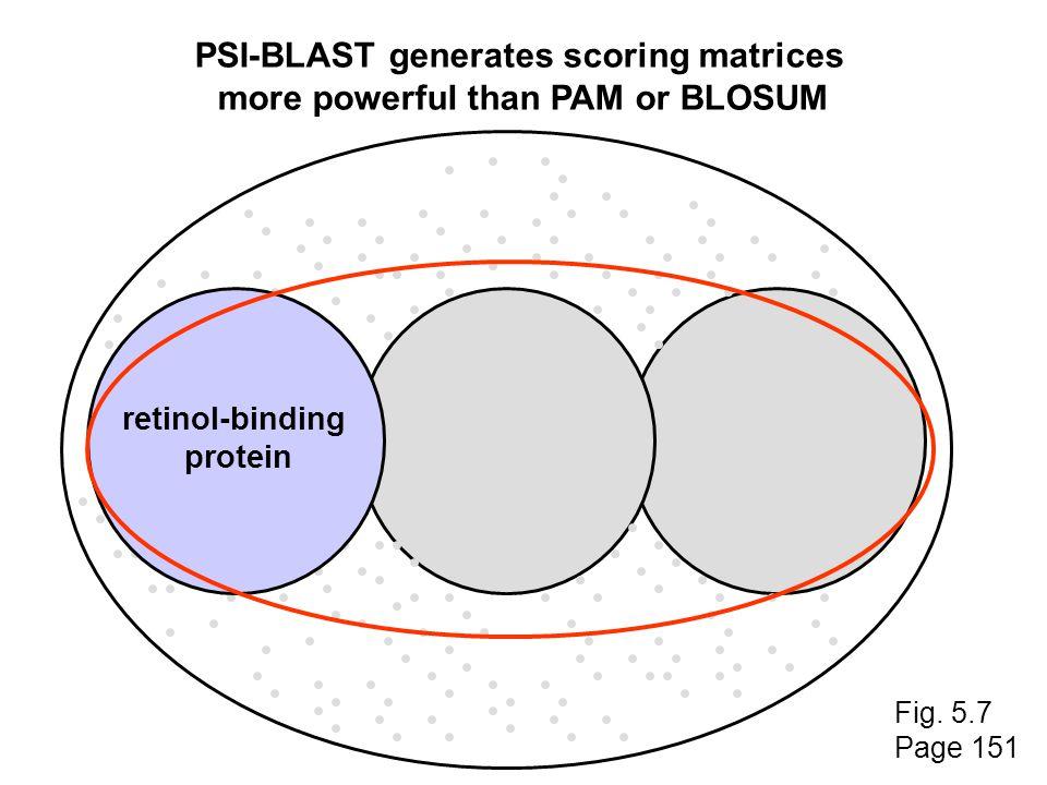 PSI-BLAST generates scoring matrices more powerful than PAM or BLOSUM retinol-binding protein retinol-binding protein Fig.