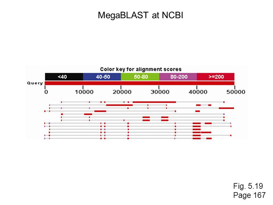 MegaBLAST at NCBI Fig. 5.19 Page 167