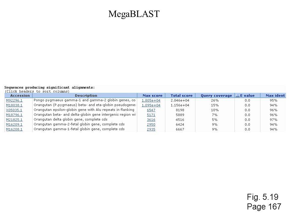 MegaBLAST Fig. 5.19 Page 167