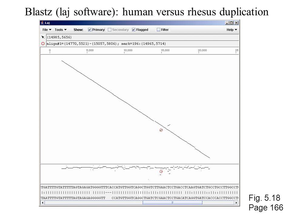 Blastz (laj software): human versus rhesus duplication Fig. 5.18 Page 166